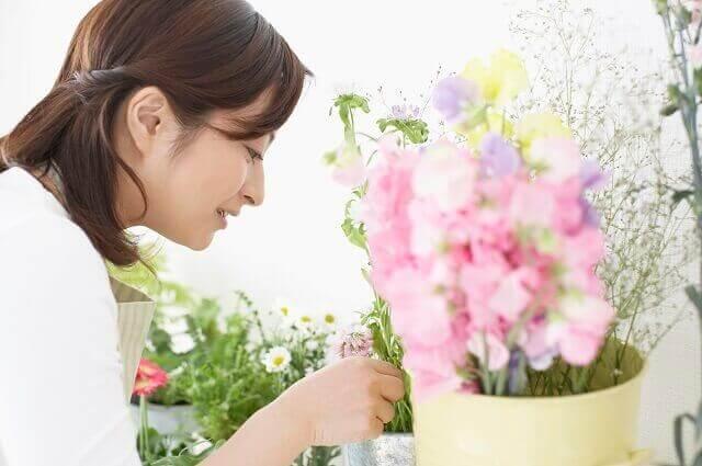 イソトマの開花時期・育て方・寄せ植え方法