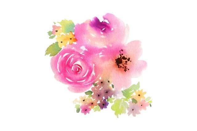 ネモフィラの育て方と季節ごとの育てやすい花・人間関係をスムーズにする花風水