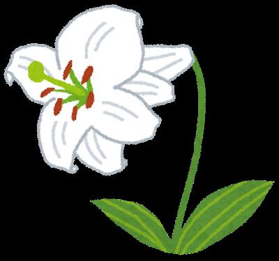 すずらんの花言葉・プリムラの花言葉と育て方